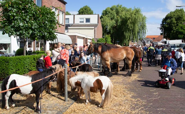 Afbeelding uitagenda paardenmarkt rijsnburg