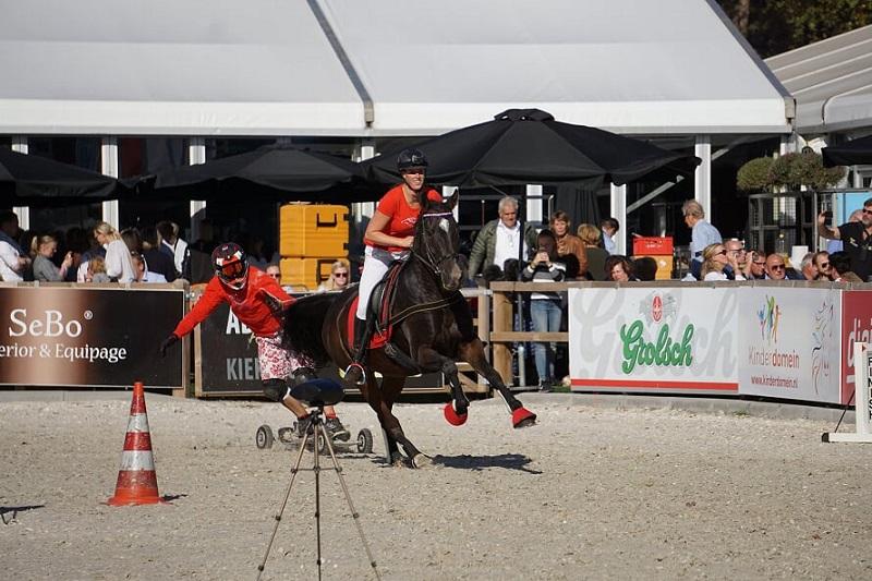 Horse boarding 1